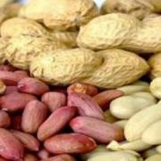 بادام زمینی Peanut